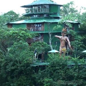 Посетить отель в джунглях