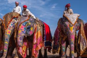 Чем путешественников привлекает Индия