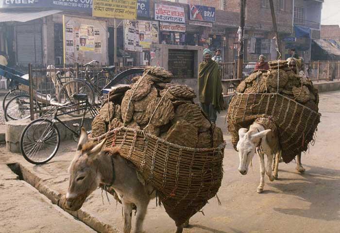 Традиционная перевозка грузов
