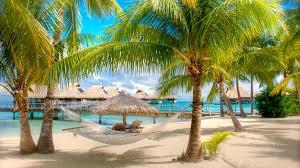 Почему так популярен отдых в Доминикане?