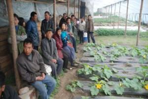 Испания раскрыла и предотвратила канал нелегальной миграции из Китая