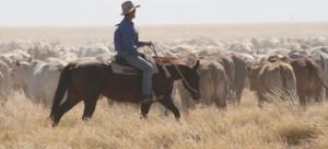 Сельское хозяйство Австралии
