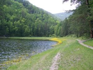 Сила сухого озера