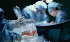 Годовалая девочка стала самым молодым реципиентом легких в Японии