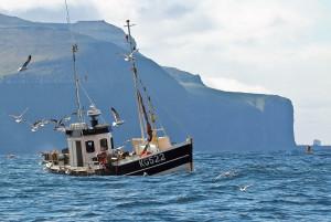 Отдых на море, каякинг и рыбалка в Дании