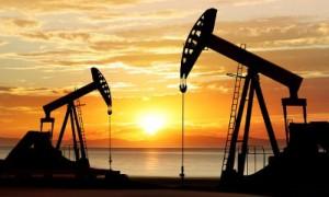 Экономика и ресурсы Южной Америки