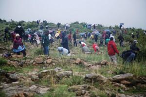 В Эфиопии решили озеленить страну