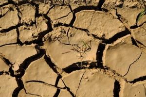 Засуха во многих регионах Германии
