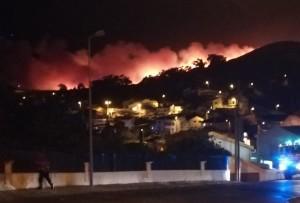 Масштабные пожары в Португалии удалось взять под контроль