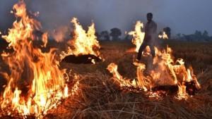 Фермеров Индии обвиняют в загрязнении воздуха в столице