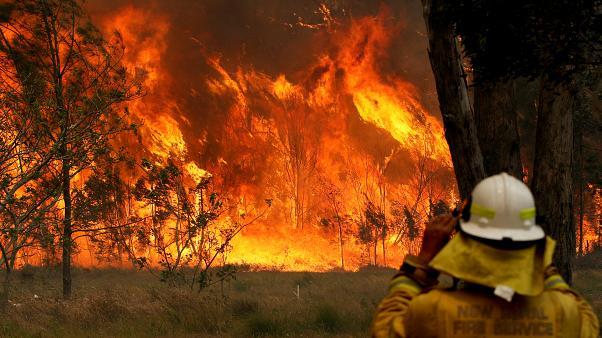 Австралия первой должна принять меры для адаптации к изменениям климата