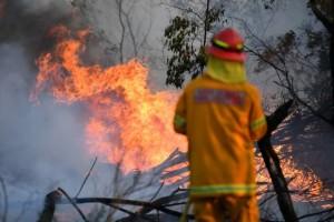 Масштабные пожары в Австралии