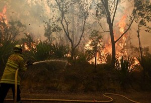 Причина возникновения пожаров в Австралии
