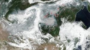 По словам НАСА, дым от австралийских лесных пожаров скоро окружит весь мир