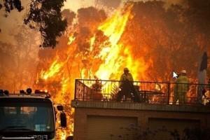 Предварительный подсчет убытков от пожаров в Австралии