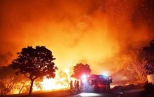 Австралийские лесные пожары