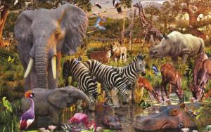 Глобальное потепление, становится основной причиной вымирания диких животных