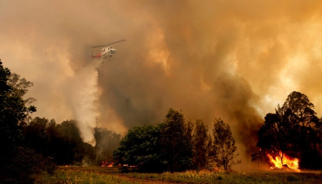 Сезон лесных пожаров в Австралии