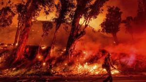 Сезон пожаров в Австралии