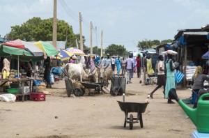 Африка совсем не готова к борьбе с коронавирусом